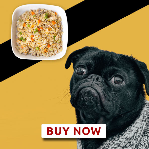 Adult dog food - Mutton meal - Weekly Subscription