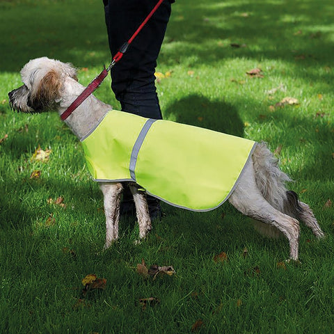 Personalised Reflective Dogs Vest