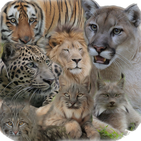 7 Exotic Cat Collage by LaWanna Mitchell