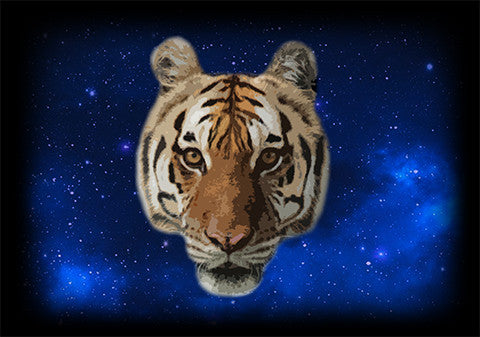 Kali Tiger in Space by Tanisha Rowe