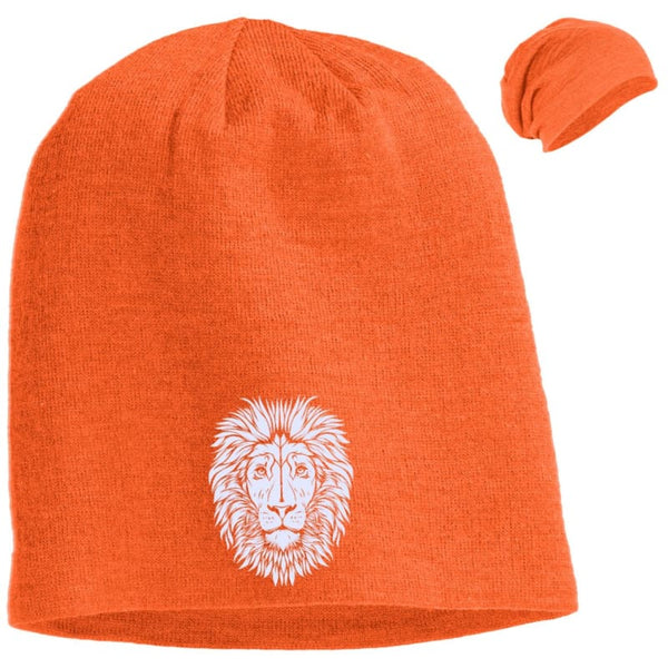 f8503759ba7 King of Beasts Slouch Beanie – catrescue