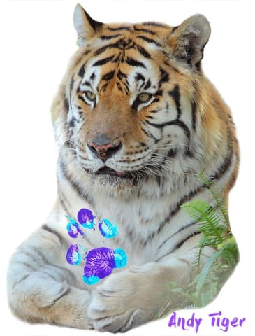 Andy Tiger and his very own Paw Print