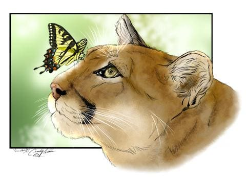 Reise Cougar and Butterfly design by Cindy Arthur