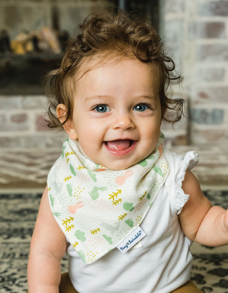 Bandana Bib - Blush Set of 2