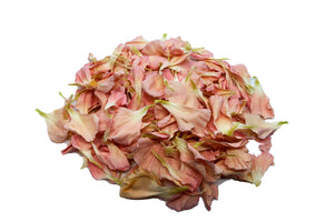 Uncle Roy's Pink Carnation Petals
