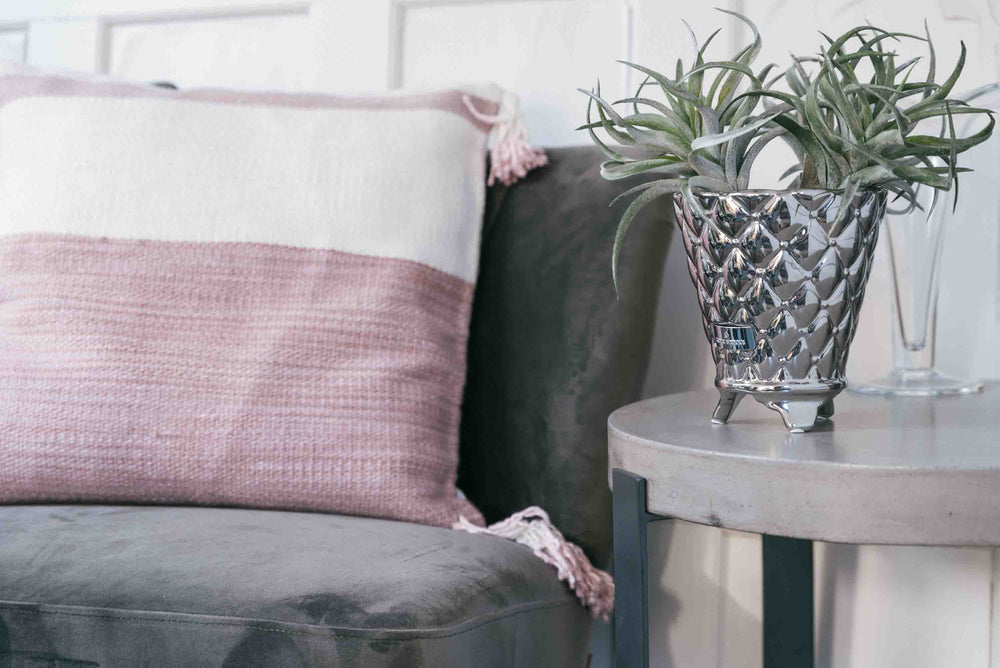 blush and magnolia cushions
