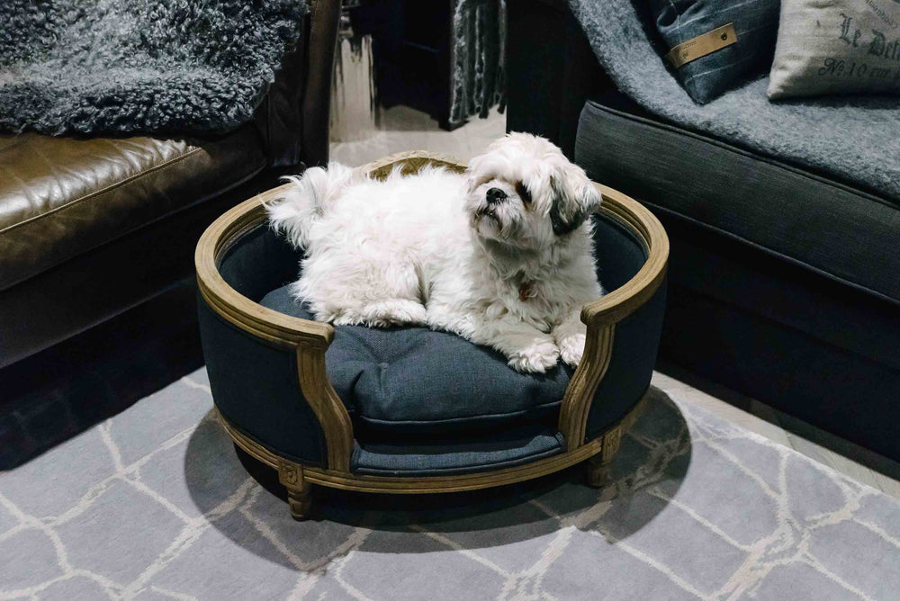 Lord Lou - George Anthracite Dog Bed - Medium