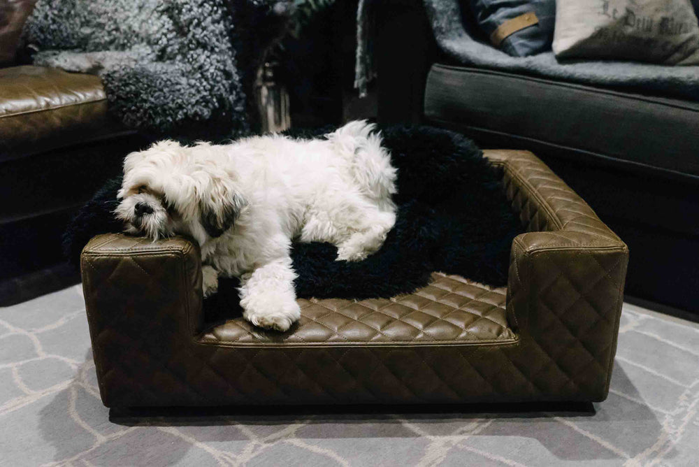 Lord Lou - Edoardo Charcoal Bentley Stitch Dog Sofa