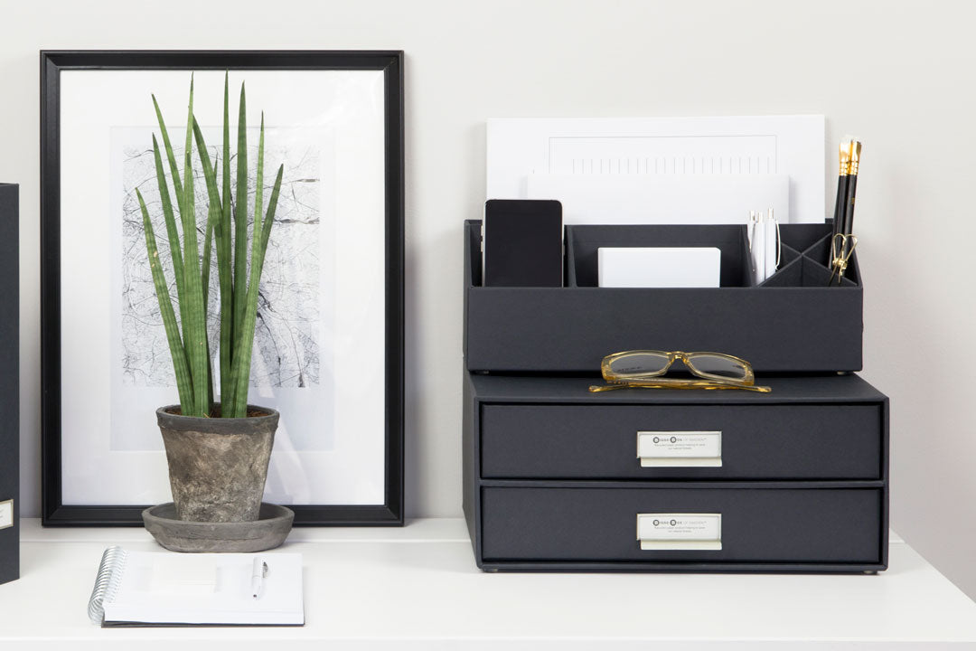 Birger 2 Drawer Desk Organiser by Bigso Sweden