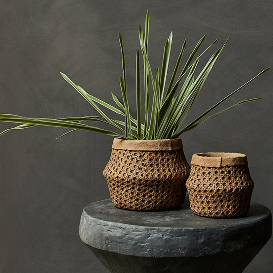Etro Cement Pot by Abigail Ahern