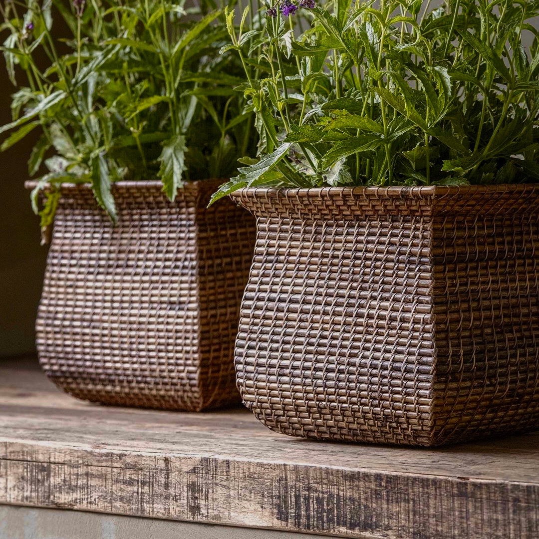 Rattan Planter Natural Finish