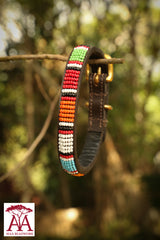 Dog & Cat Collar in bright Maasai colours