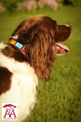 Dog Collar in bright Maasai colours