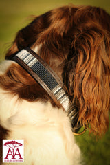 Dog Collar in monochrome