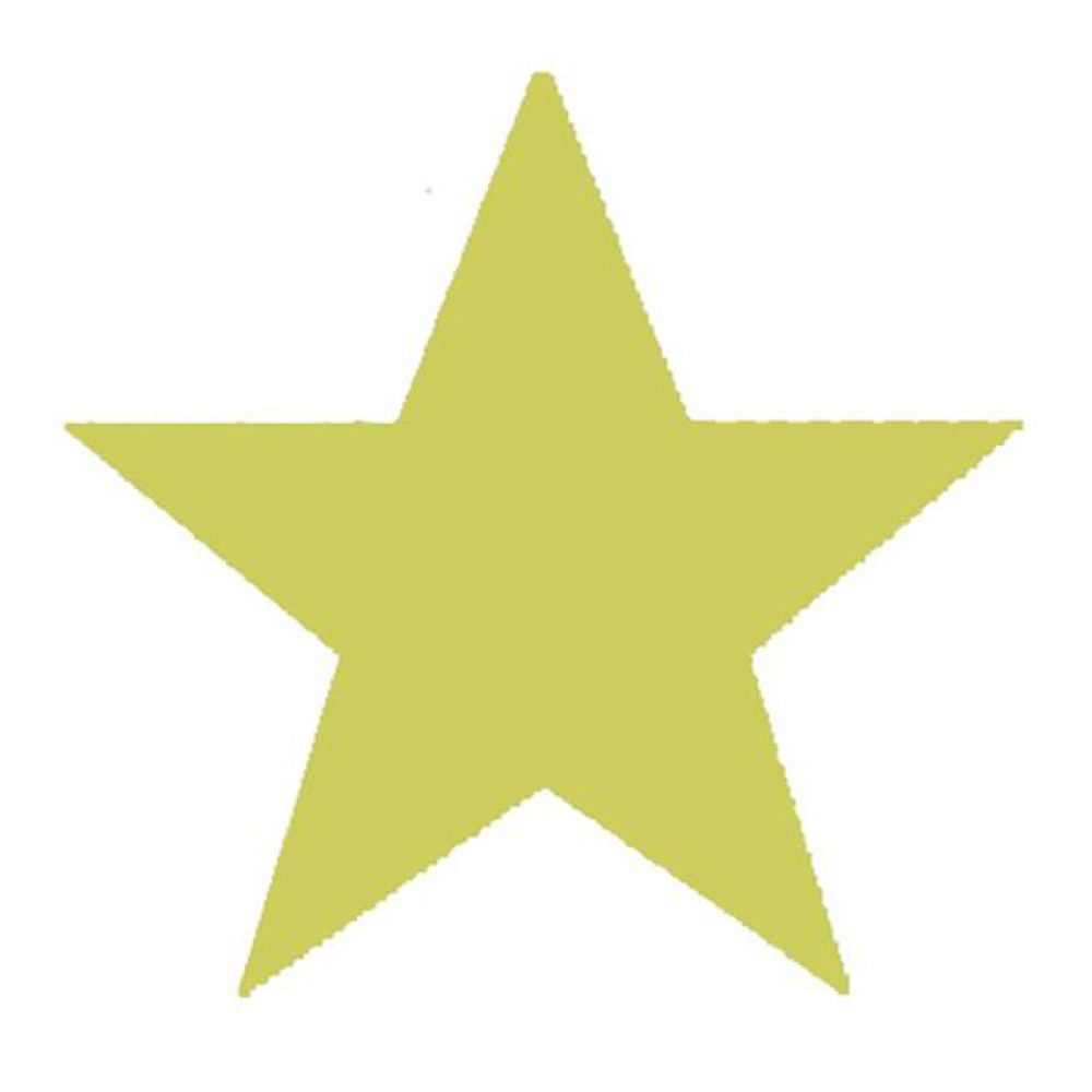 Gold Star Stamp - stamptastic-uk