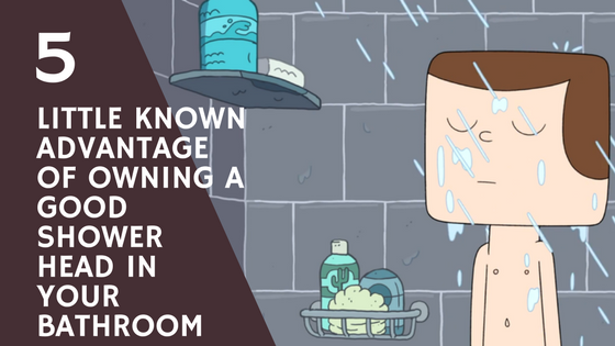 5 Little Known Advantages of Owning a Good Shower Head In Your Bathroom