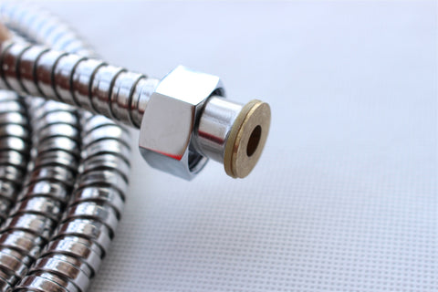 International Stainless Steel Shower Hose