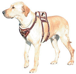 "2 1/2"" Raised Handle Assistance Harness"
