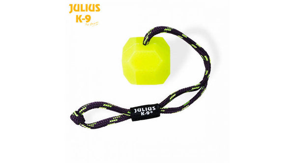 JULIUS-K9 IDC® BALL - Neon (FLUORESCENT) - SOFT