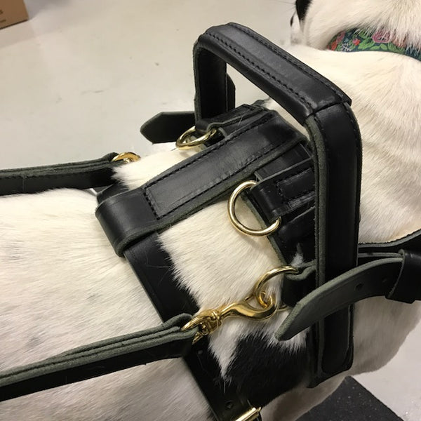 Custom Support Harness (SPECIAL ORDER!)