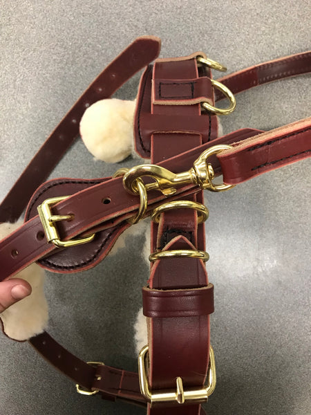 Counter Balance Harness