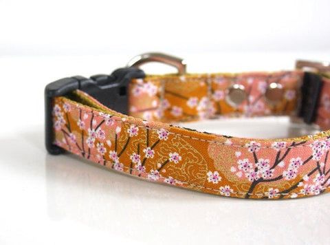 cherry blossom dog collars