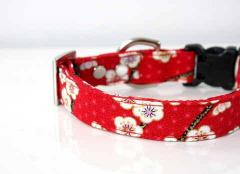 Red Plum Ume Dog Collar - red, white