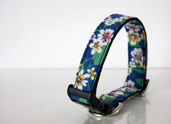 durable dog collars