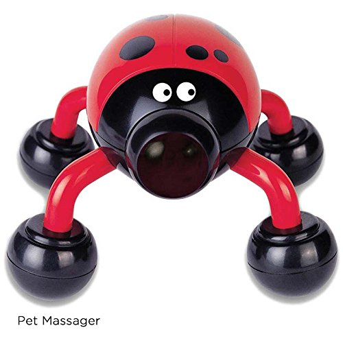 Lady Buzz Pet Massager