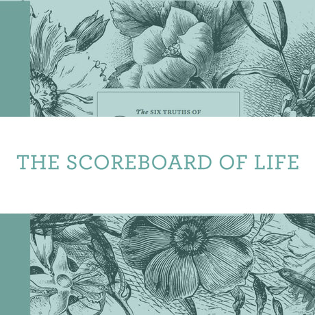 The Scoreboard Of Life | Video Lesson (Online Access)