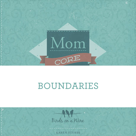 Boundaries | Video Lesson (Online Access)