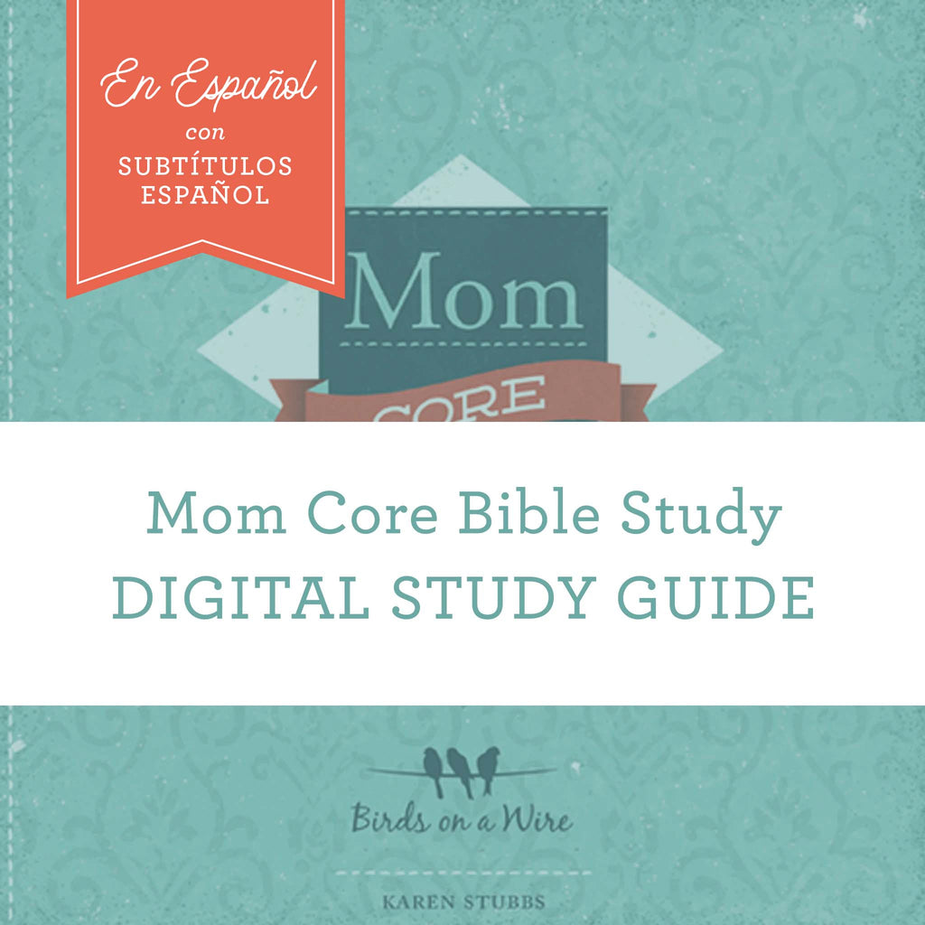 SPANISH- Mom Core workbook