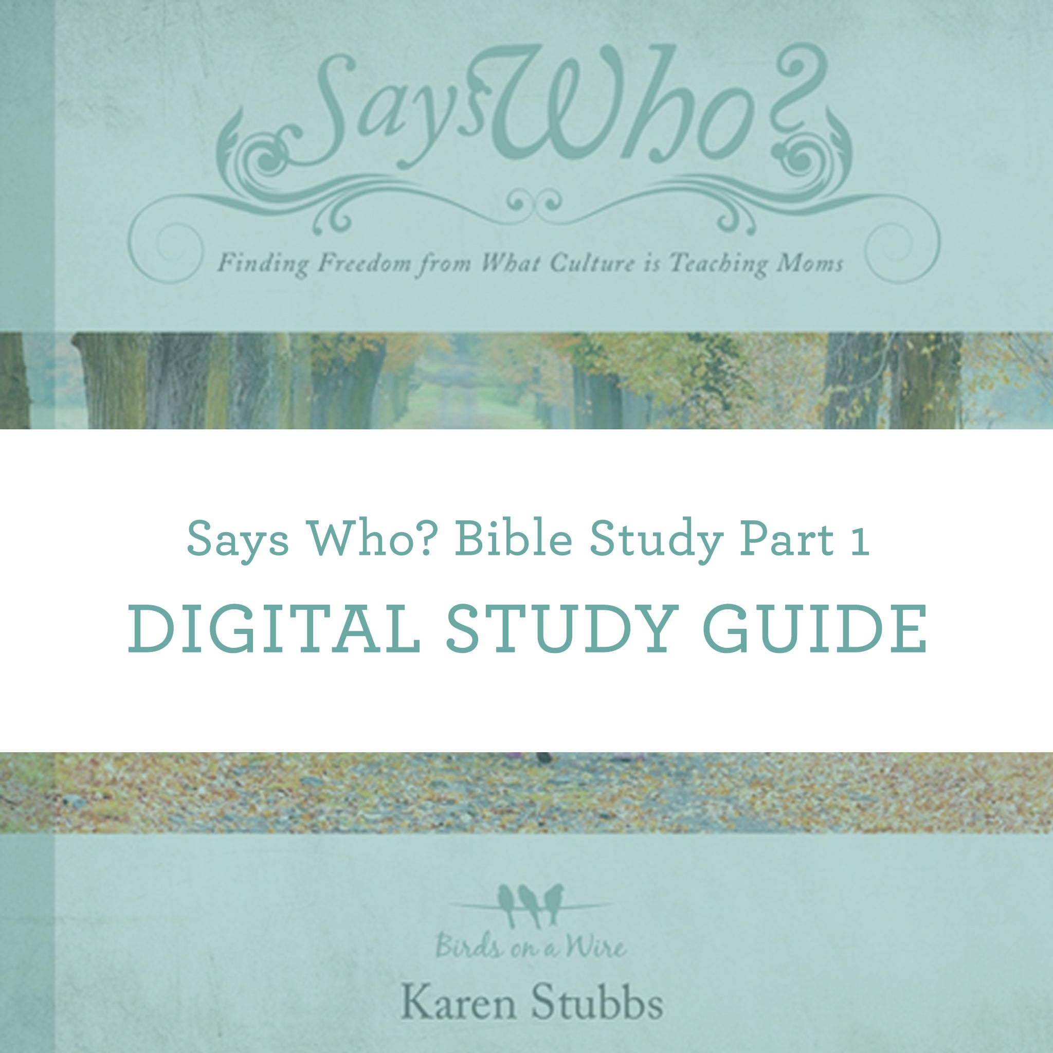 Says Who? Bible Study Part 1 | Digital Study Guide