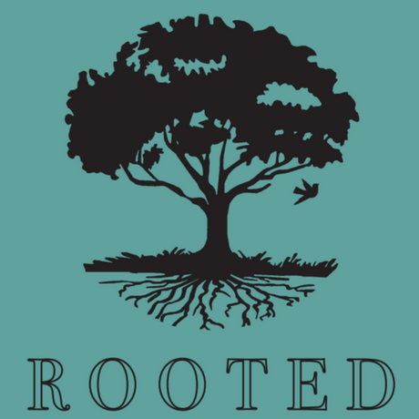 Rooted | Video Series & Digital Study Guide (Online Access)