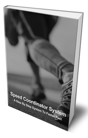 The Speed Coordinator System