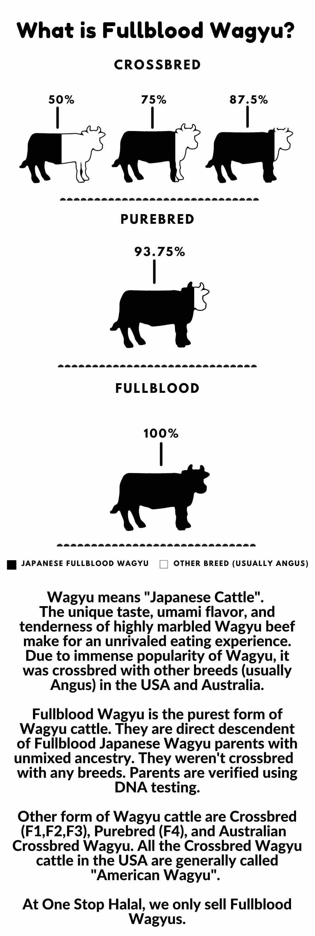 What is Wagyu - Mobile
