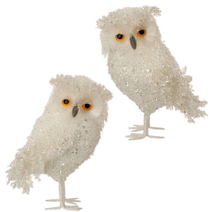 Iced Snow Owl 2 Pc Ornament Set