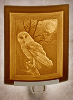 Curved Lithopane Owl Nightlight