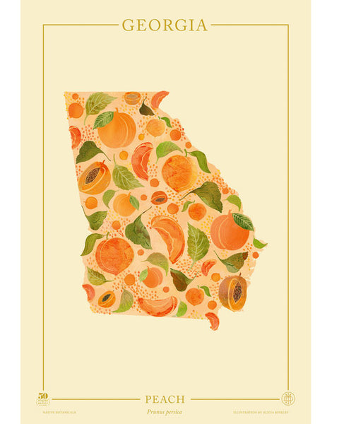 Georgia Native Botanicals Print