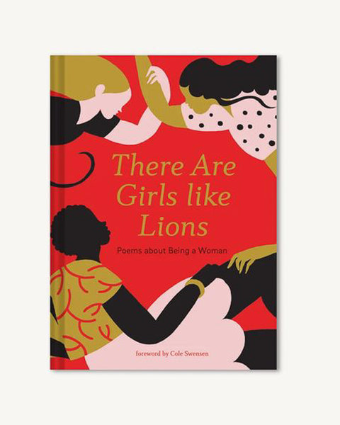 There Are Girls Like Lions Book