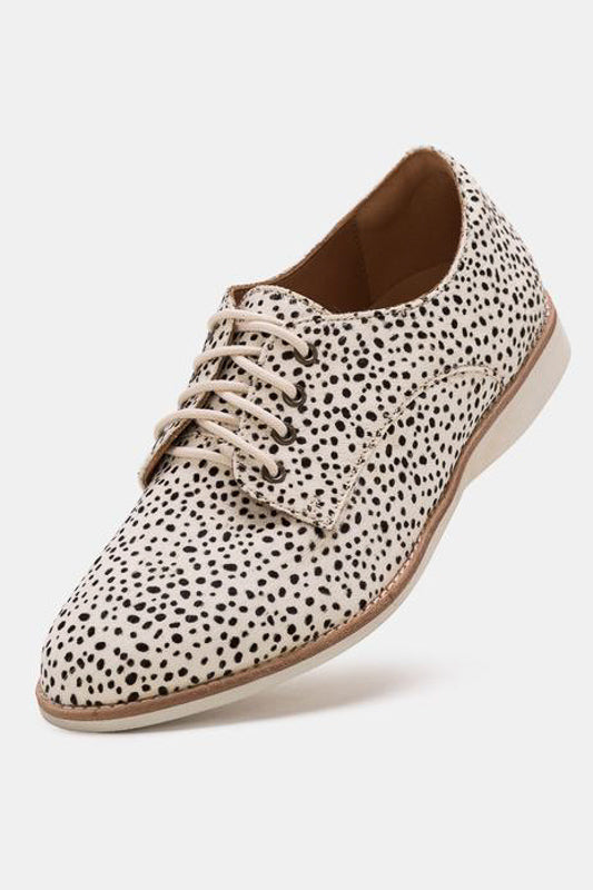 Derby Snow Leopard Oxfords