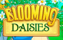 Blooming Daisies Mac Game
