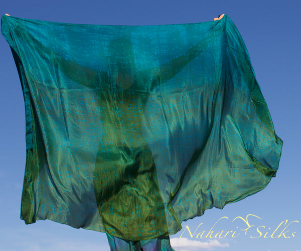 Nahari Silks Womens 100% Silk Dance Scarf Shawl  Blended Color Lake Life Half Circle 82