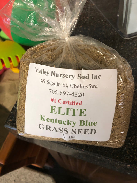 Kentucky Blue Elite Grass Seed