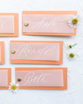 Vellum Overlay Place-Cards with White Ink Calligraphy