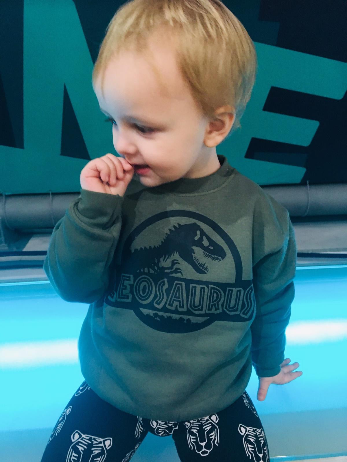 Personalised Jurassic sweatshirt