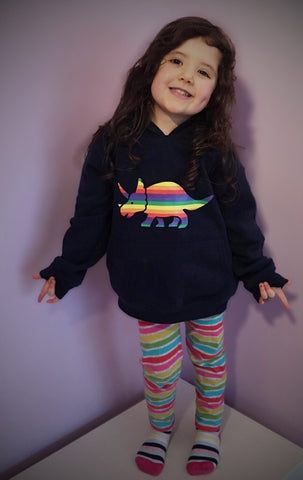Rainbow Dinosaur pull on Hoody