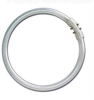 Circular Fluorescent T5 22 Watt 225mm Dia Cool White (Tube Only)