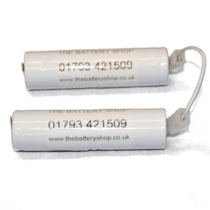 TBS-89899694 4.8v 1.6Ah Ni-Cd Battery Pack (2x2SCH1-6T4-SP34 and Link Lead)