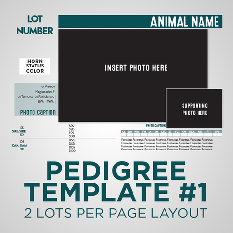 Sale Animal Pedigree Template - Version 1
